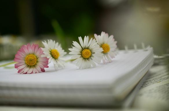 notebook-1405306_1280